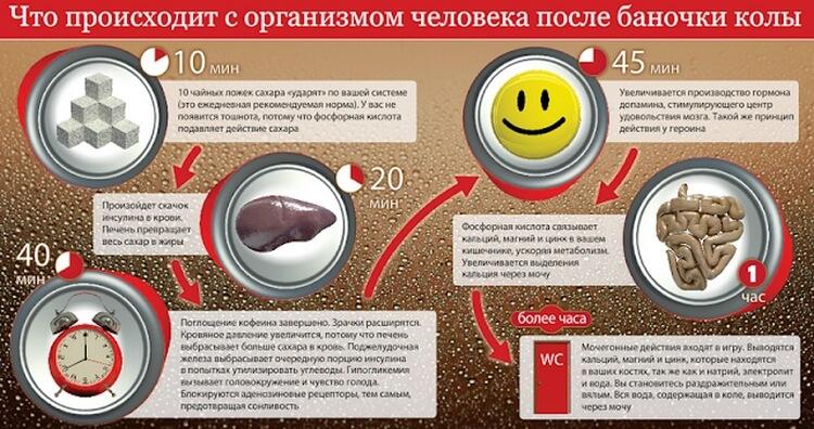 А вы знаете, что случается с организмом сразу после того, как вы выпиваете Кока-Колу?