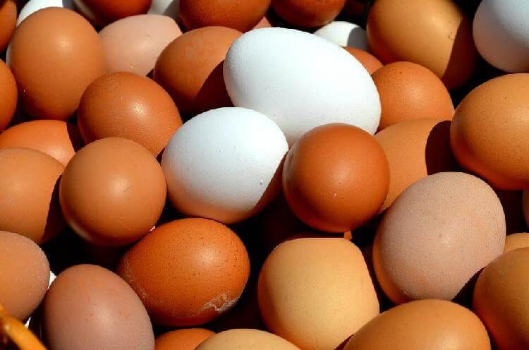 Если будете кушать по 2 яйца в день, ваш организм скажет вам «спасибо» - читайте о важных исследованиях