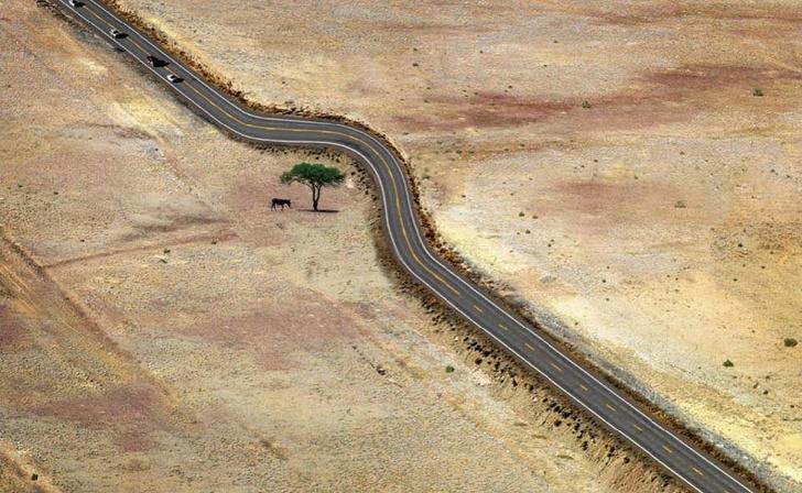 Удивительные фото, демонстрирующие, как нужно уважать природу – несколько крутых примеров