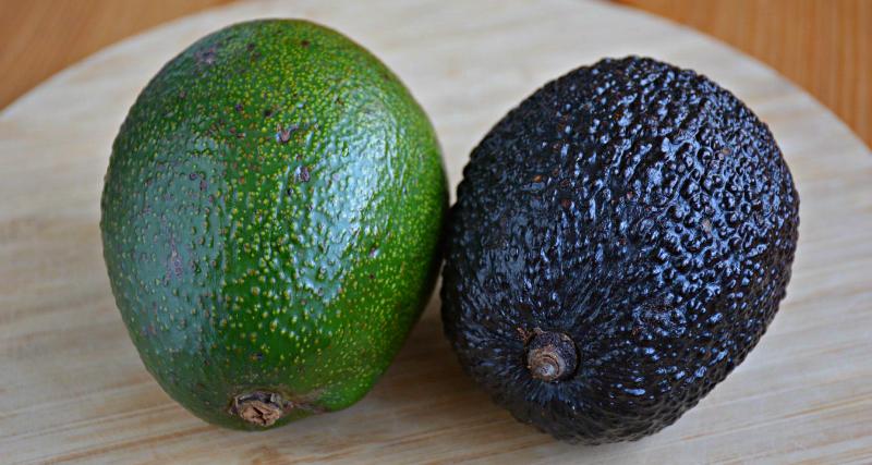 Правила выбора, хранения, употребления авокадо – самого полезного продукта, способного заменить салат, рыбу и мясо