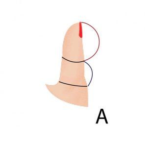 Просто посмотрите на большой палец своей правой руки – и сможете узнать много интересного о характере
