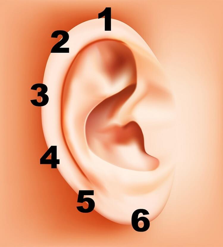 Просто зажмите прищепкой ухо всего на 5 секунд - метод китайской медицины, который действительно работает