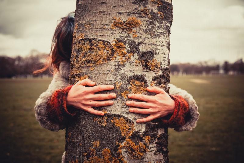 Знаете, что будет, если постоянно обнимать граб, березу, грушу и другие деревья?