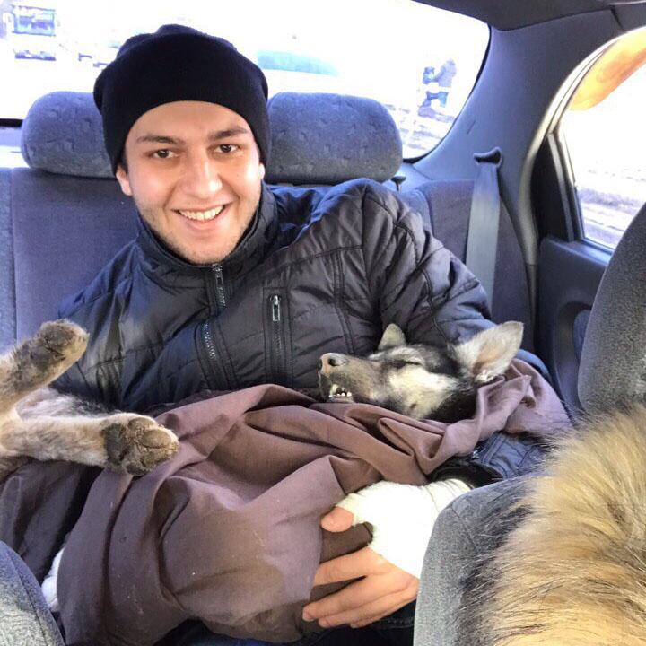 Ищут хозяев собаке, которая вынуждена была провести 5 дней с головой в банке…