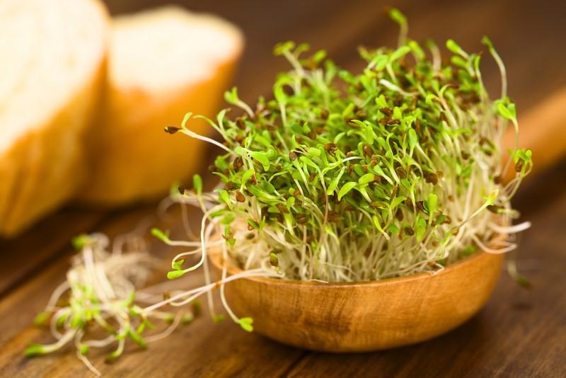 Хотите получить живые ферменты с сохранением их эффективности, пользы, питательных веществ и т.д.?